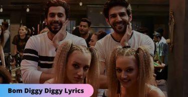 Bom Diggy Diggy Lyrics Download